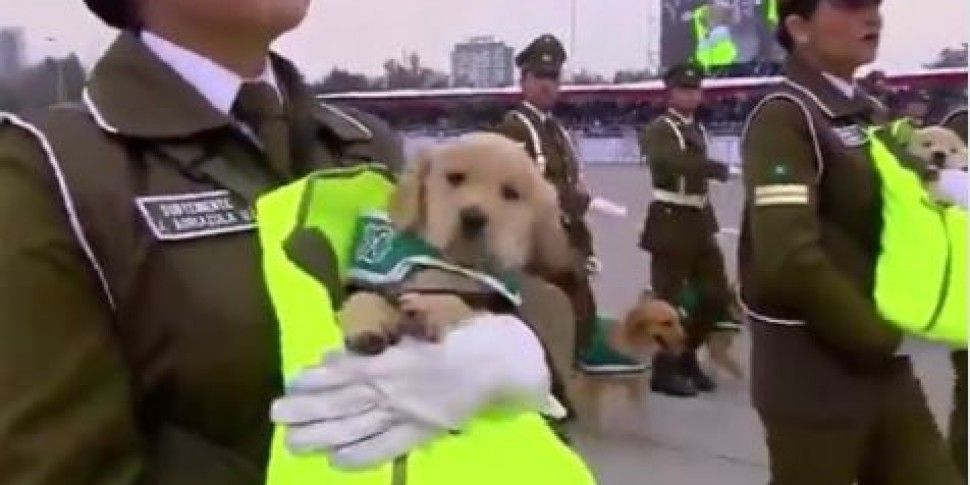 This Chilean Police Parade Is...