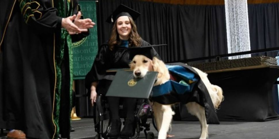 Service Dog Gets Honorary Dipl...